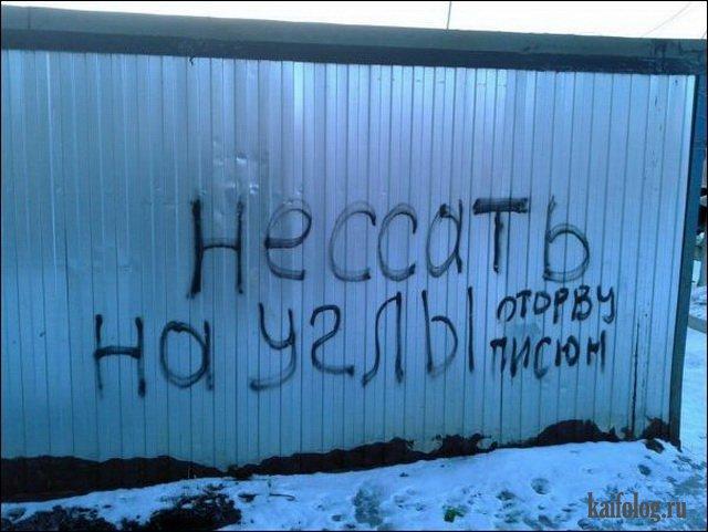 Русские маразмы (55 фото)