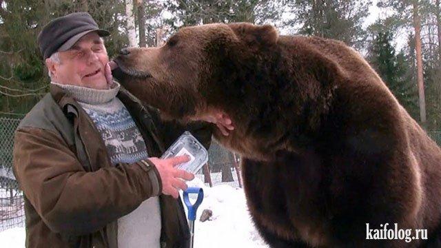 День медведя (45 фото)