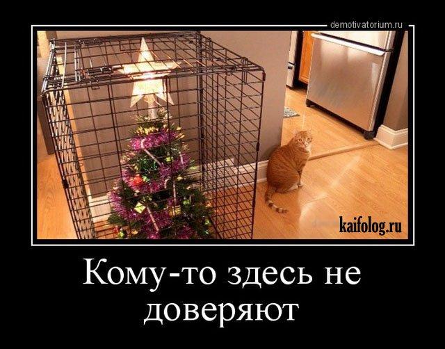 Новогодние демотиваторы 2016 (45 фото)