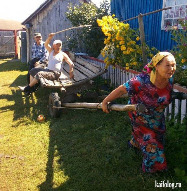 Доминируй и властвуй (45 фото)