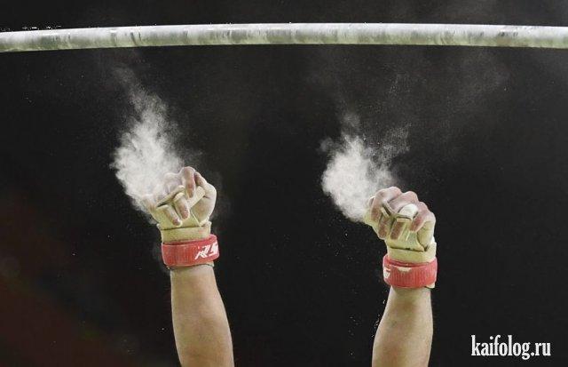 Лучшие спортивные фото 2016 (45 фото)