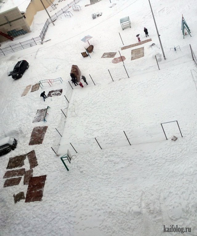 Ковры атакуют (50 фото)