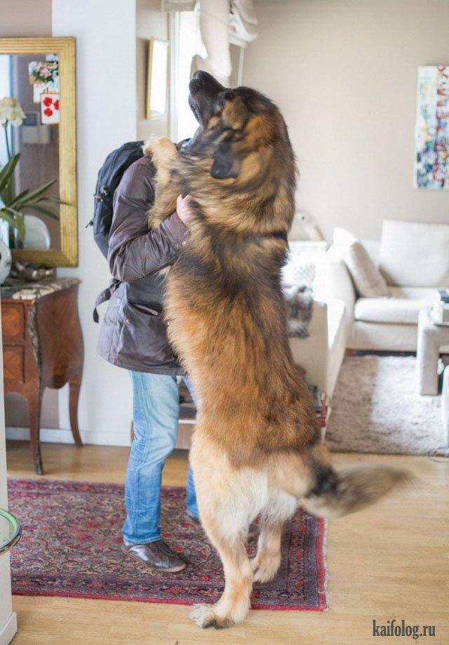 какой размер любят девушки Пущино