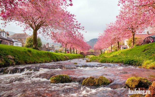 Фото авы для женщин весна (32 фото)! » Картинки и фото приколы ... | 400x640