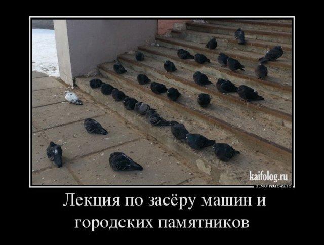 Первоапрельские демотиваторы (45 фото)