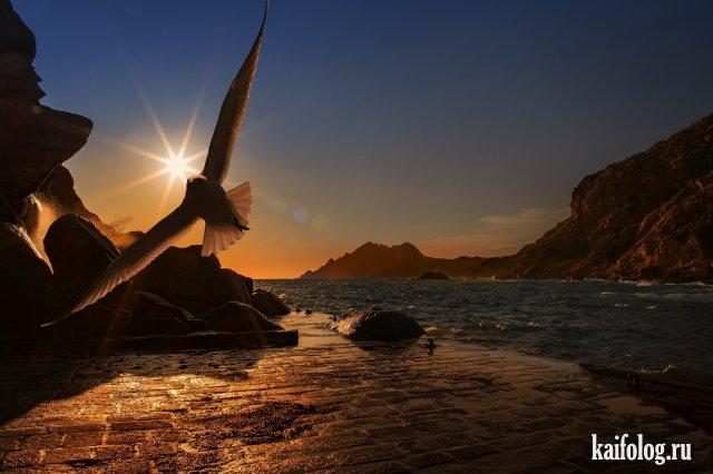 Великолепие природы (50 фото)
