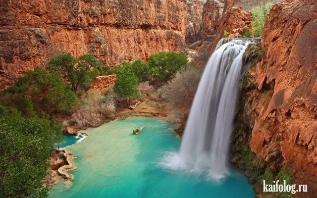 Красивые фотографии природы (55 фото)