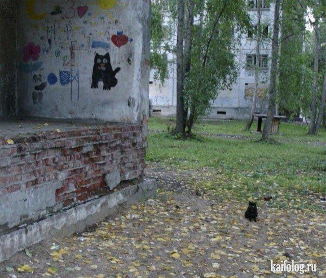 Русская тоска (45 фото)