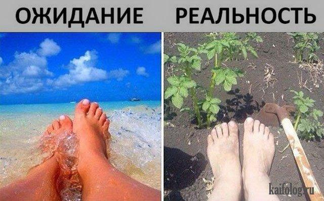 Скоро лето (45 фото)