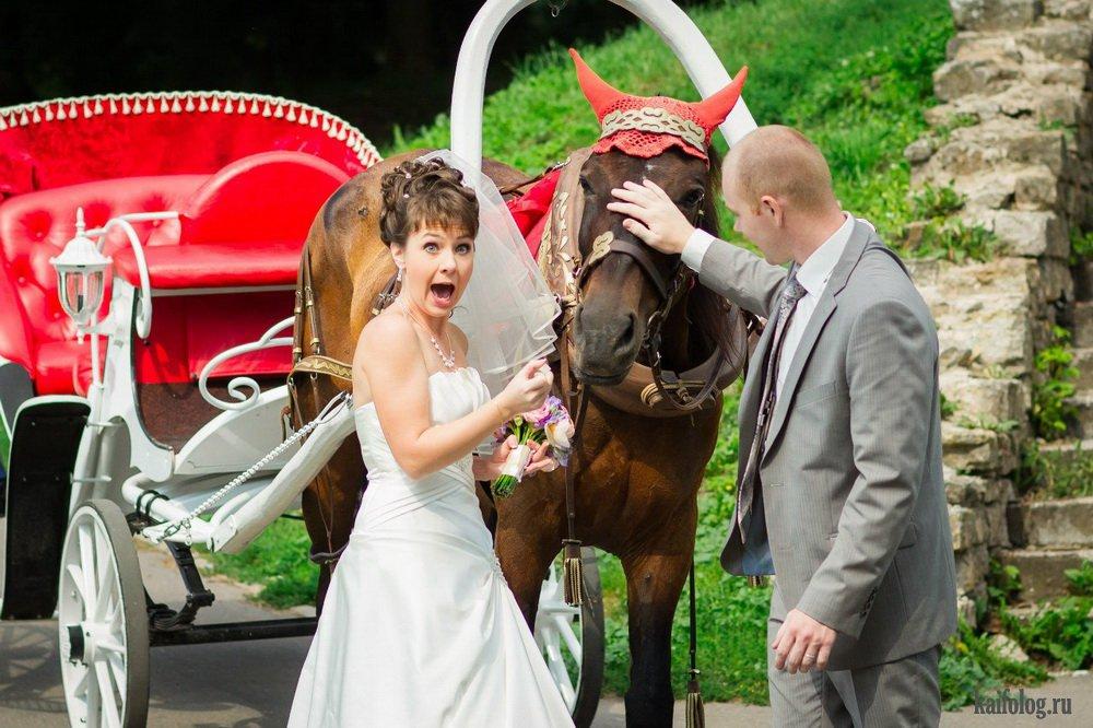 расположен центре очень странные невесты фото можно как сувенир