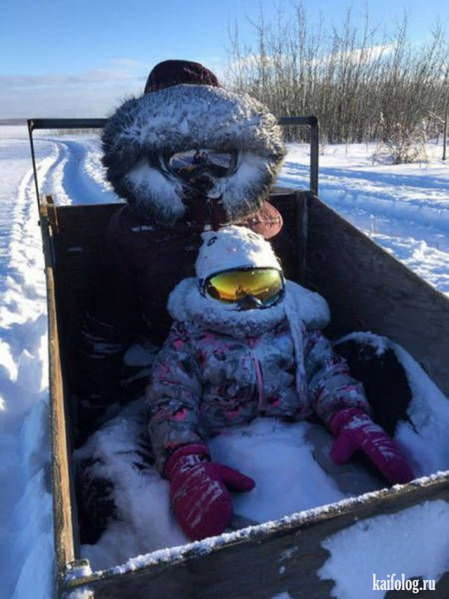 Типичная Канада (50 фото)