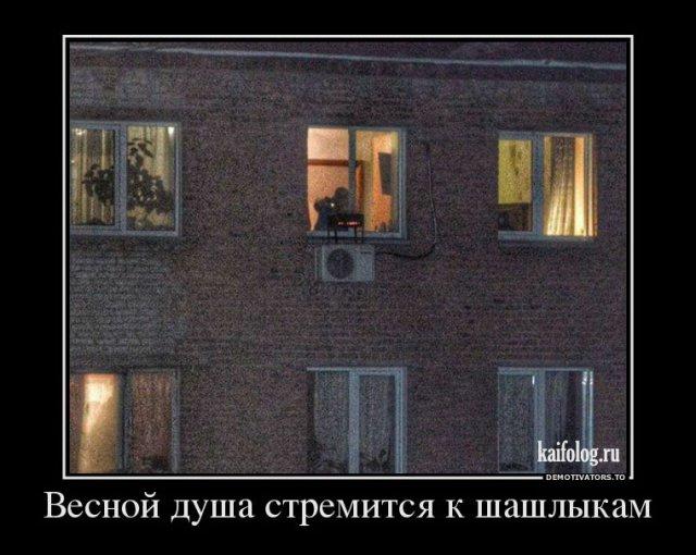Новые русские демотиваторы (50 фото)