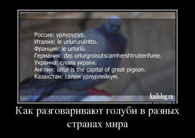 Прикольные и философские демотиваторы (40 фото)