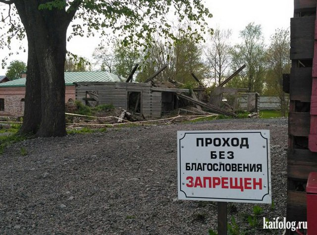 Пятничные русские приколы (50 фото)