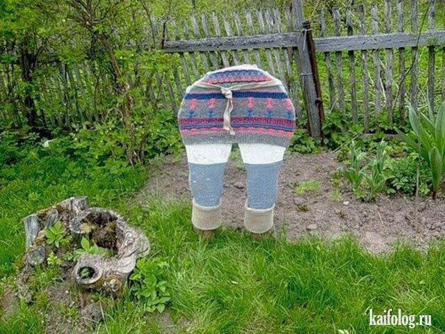 Сад и огород своими руками: фото и идеи