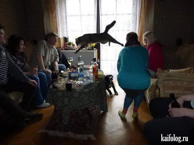 Подборка убойных приколов (50 фото)