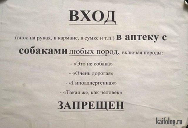 Отборные русские маразмы и приколы (50 фото)