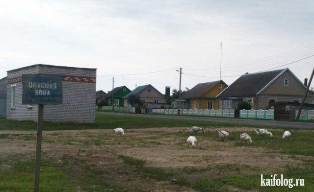 Россия - страна приколов (60 фото)