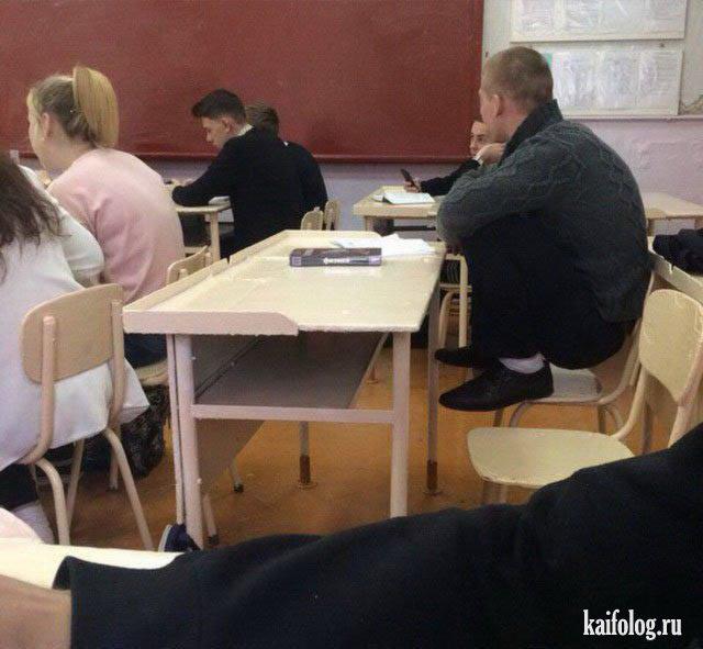 Приколы про школу и образование (41 фото)