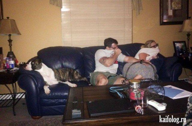 Смешные и странные семейные фото (45 штук)