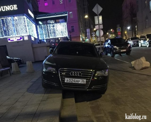 Как паркуются бараны (45 фото)