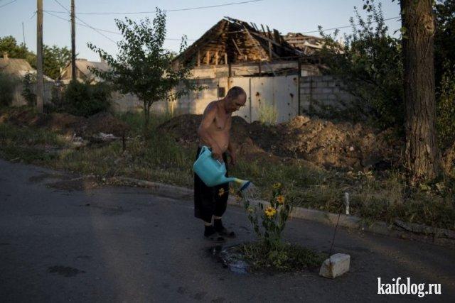 Россия глазами американцев (50 маразмов)