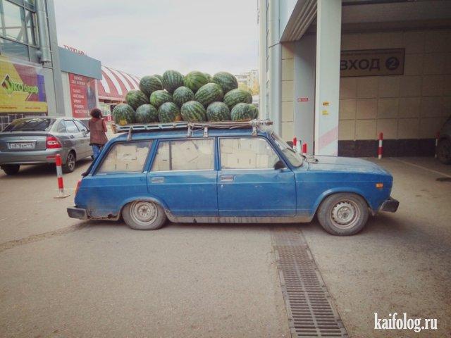Приколы и маразмы из России (55 фото)
