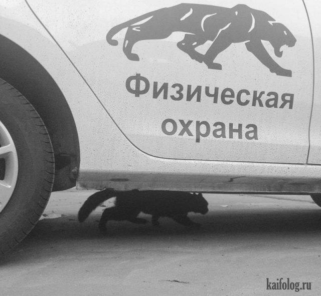 Фото приколы и русские идиотизмы (55 фото)
