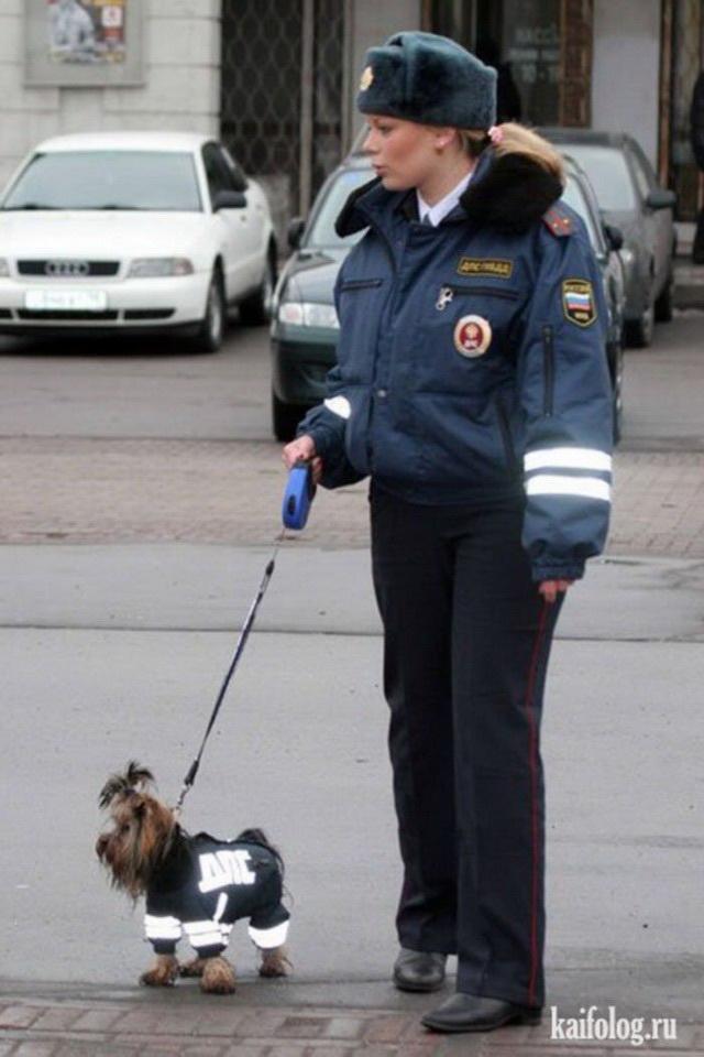 Девушки полицейские (45 фото)
