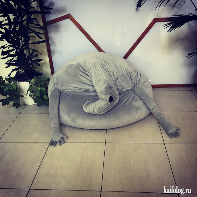 Когда и грустно и смешно (55 фото)