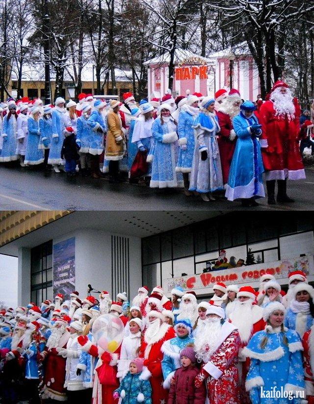 Смешные русские фото (50 штук)