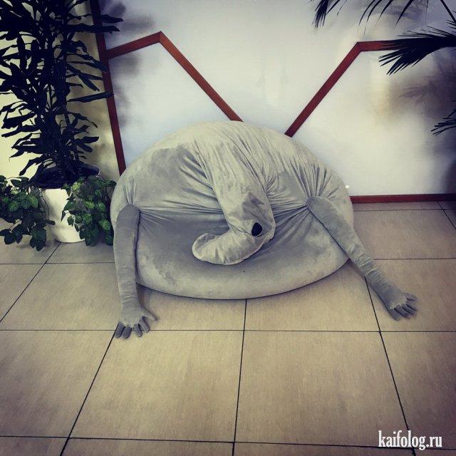 Когда грустно и смешно (40 фото)