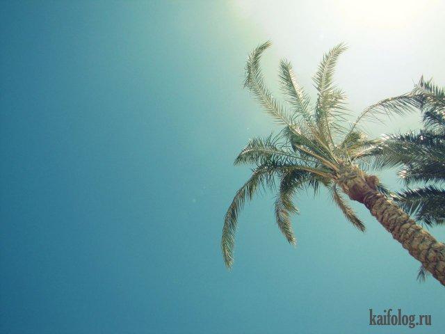 Тёплая красота (50 фото)