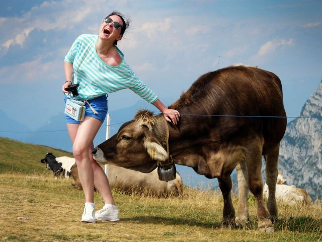 Эти забавные животные (50 фото)