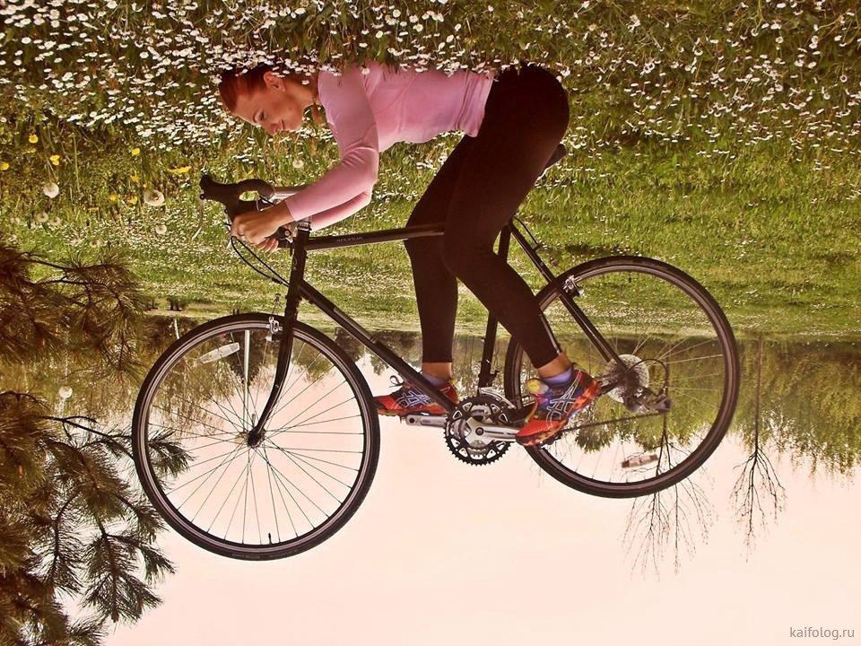 делает фотографии велосипед картинки прикольные эндокардиты встречаются