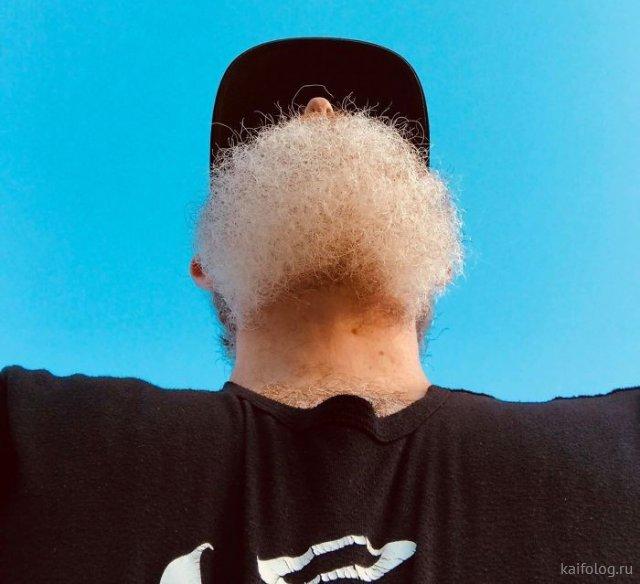 Перевёрнутые бородатики (40 приколов)