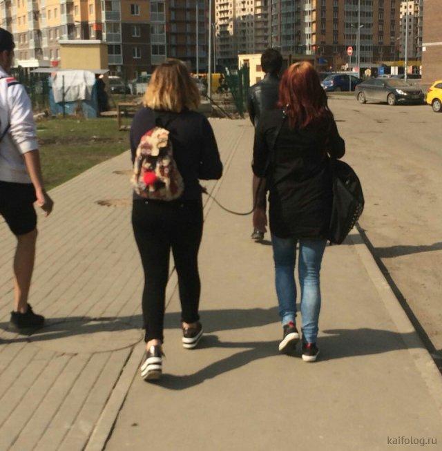 Москва глазами москвичей (50 маразмов)
