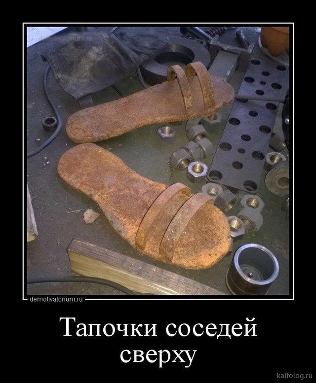1527306896_011.jpg