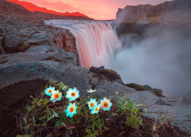 Вдохновение от природы (55 фото)