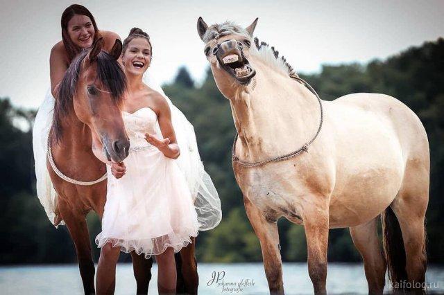 Смешные фото приколы (55 картинок)