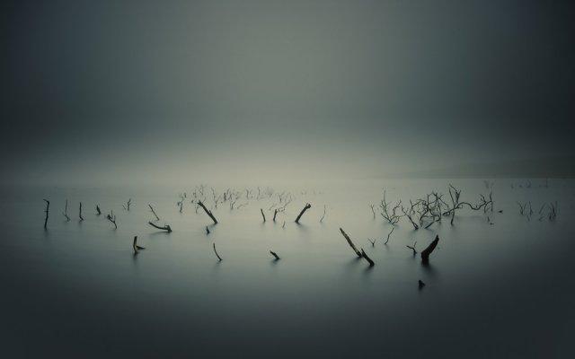 Мрачная красота (50 фото)