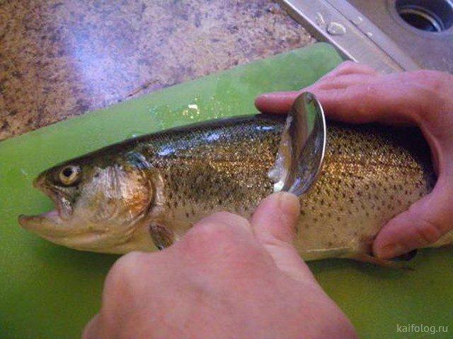 Нетрадиционные способы чистить рыбу (20 фото)