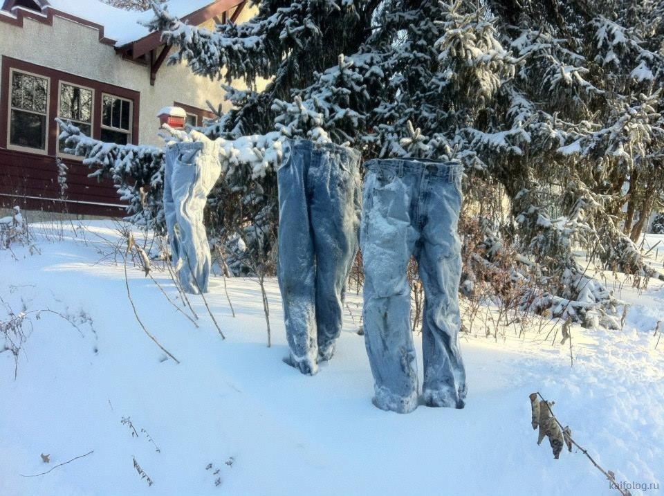 охрана заморозки приколы фото
