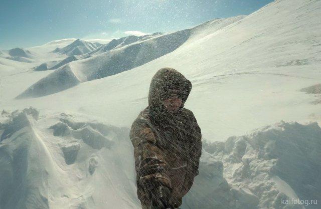 Как выглядит настоящий холод (40 фото)