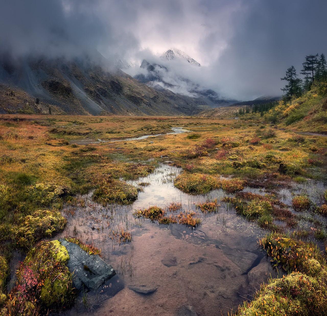 всем этом дикая природа фото пейзаж его можно найти