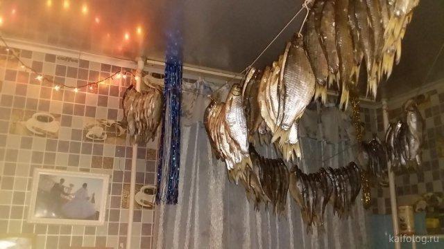 Приколы про рыбалку и рыбу (50 фото)