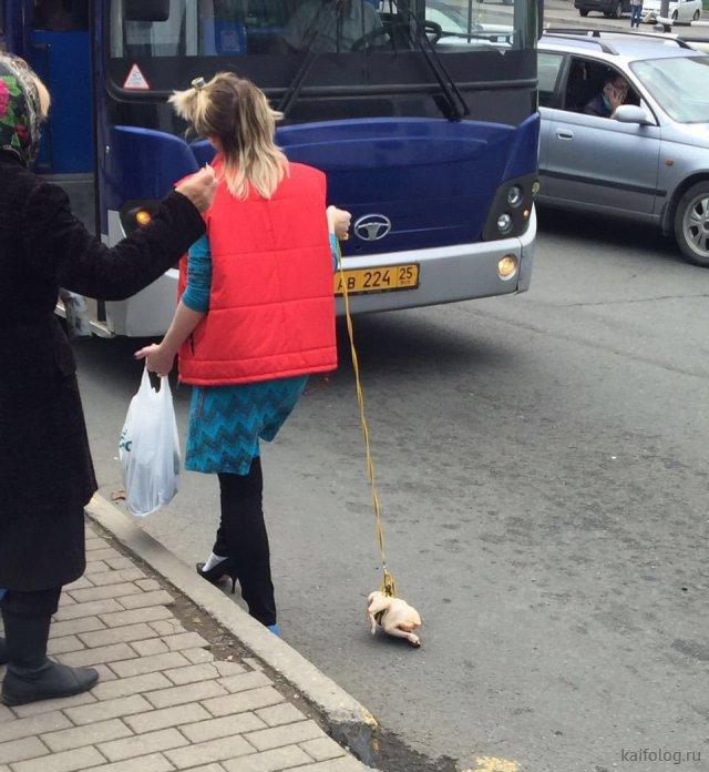 Беспощадный русский гламур (50 приколов)