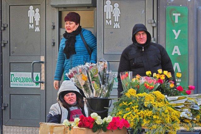 Приколы на 8 марта (40 фото)