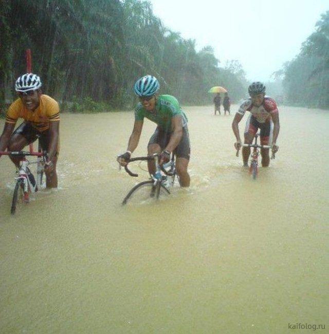 Приколы про дождь (50 фото)