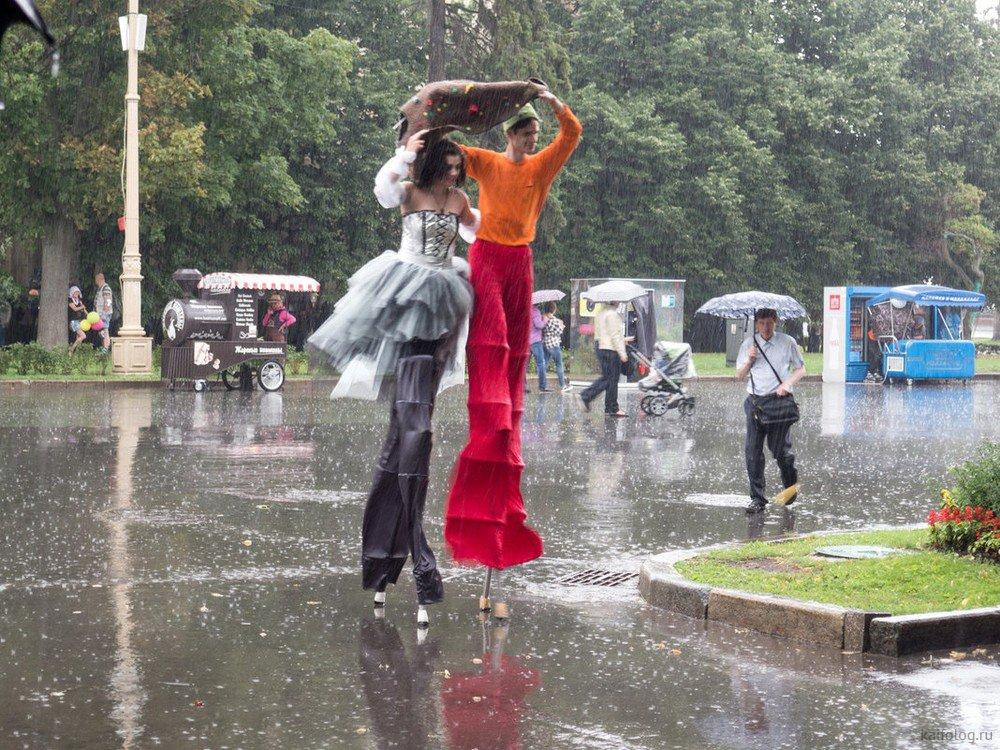 премьера юмор картинки про дождь похудения л-карнитин используют